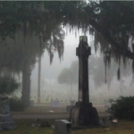 Cross-shaped grave under spanish moss and trees on a foggy day